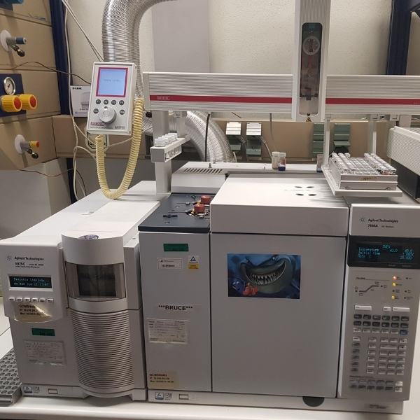 Gaschromatograph gekoppelt mit einem Massenspektrometer